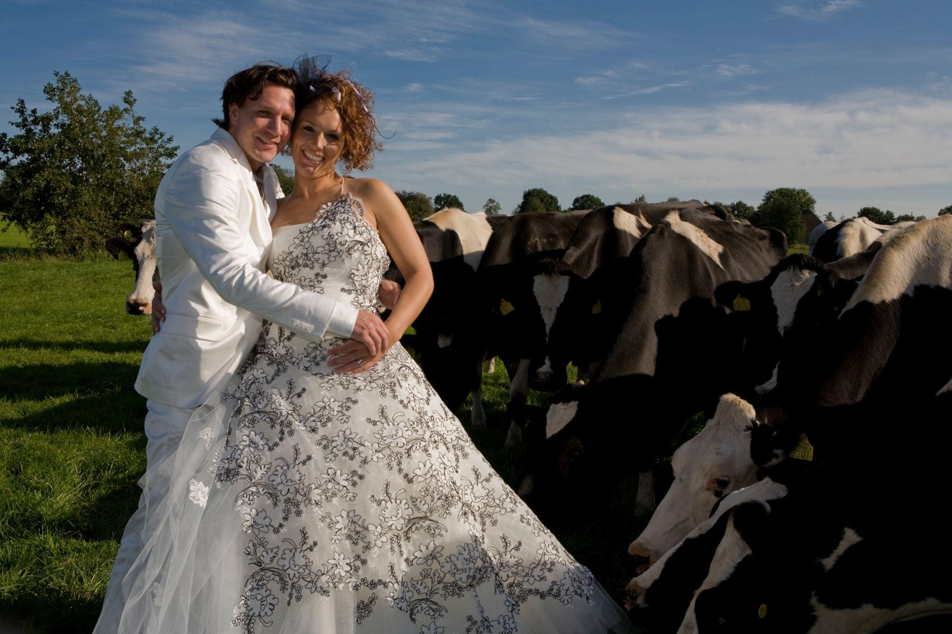 Bruiloft V