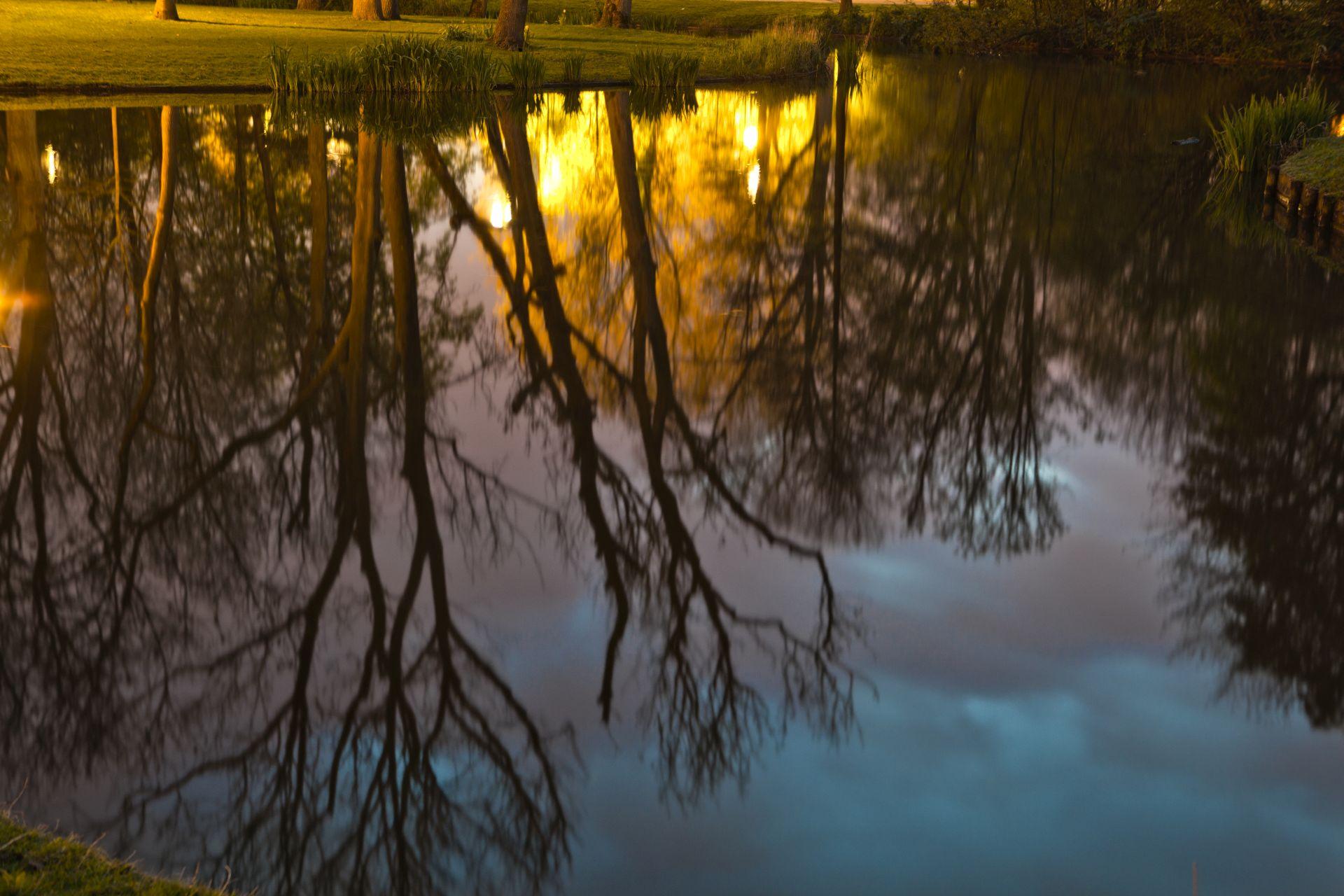 de stad Vondelpark nacht (1 van 8)