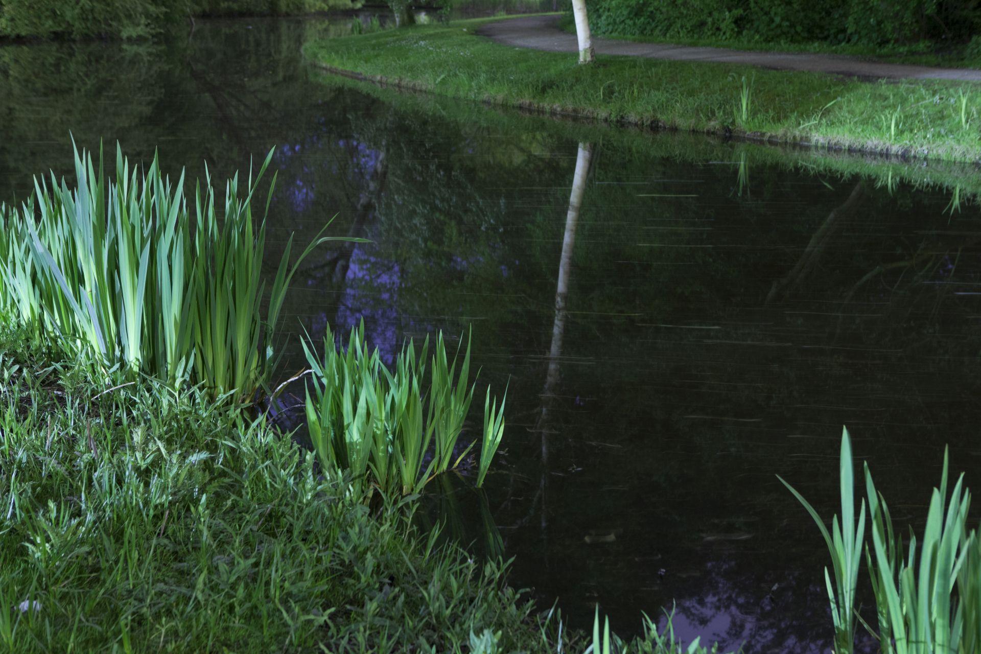 de stad Vondelpark nacht (6 van 8)